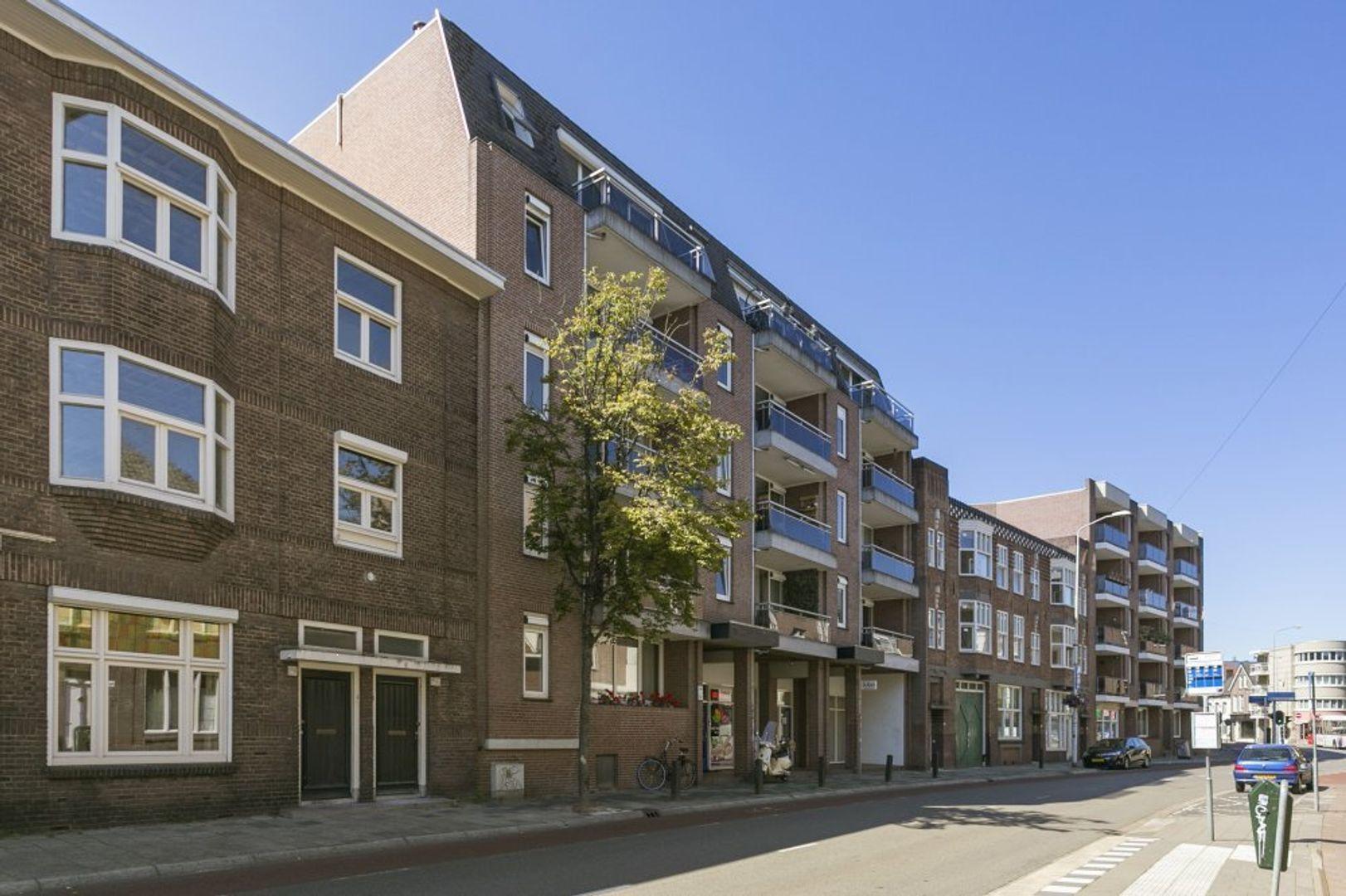 Grote Berg, Eindhoven foto-0 blur