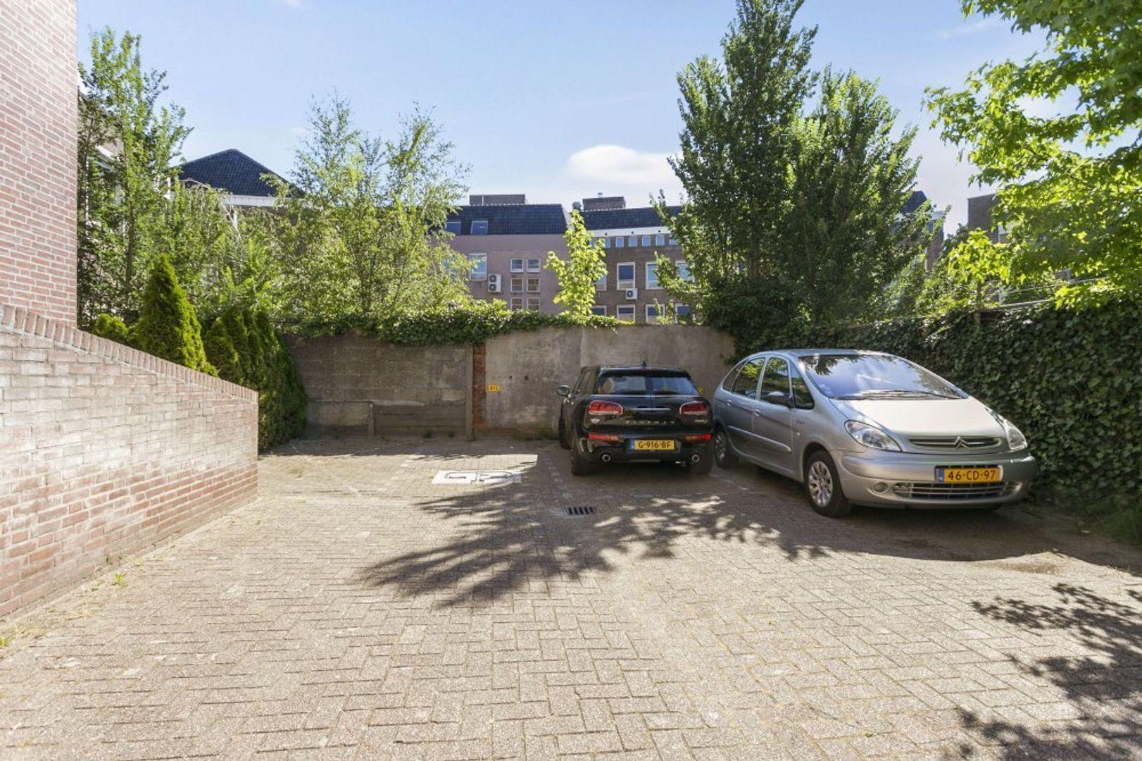 Grote Berg, Eindhoven foto-25 blur
