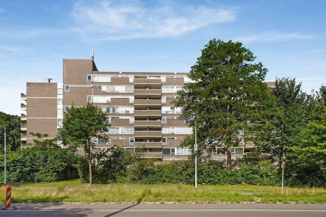 Kruisakker, Eindhoven blur