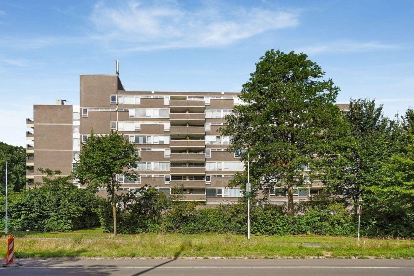 Kruisakker, Eindhoven foto-0 blur