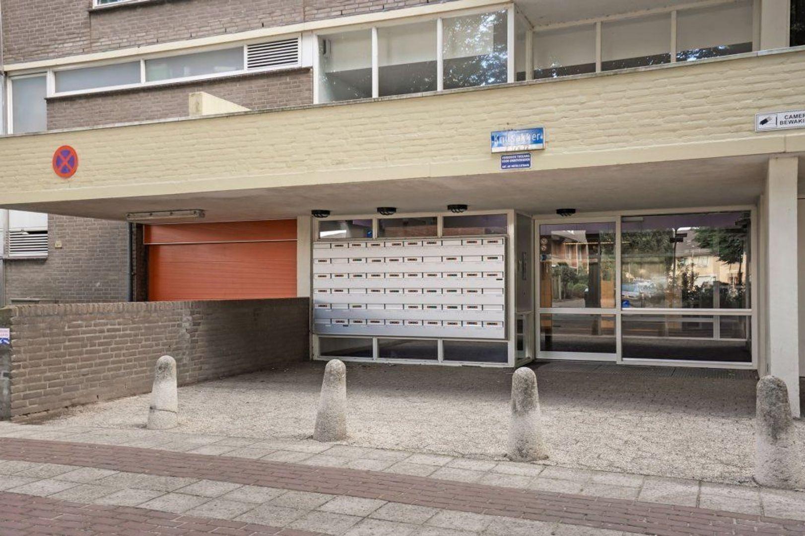 Kruisakker, Eindhoven foto-20 blur