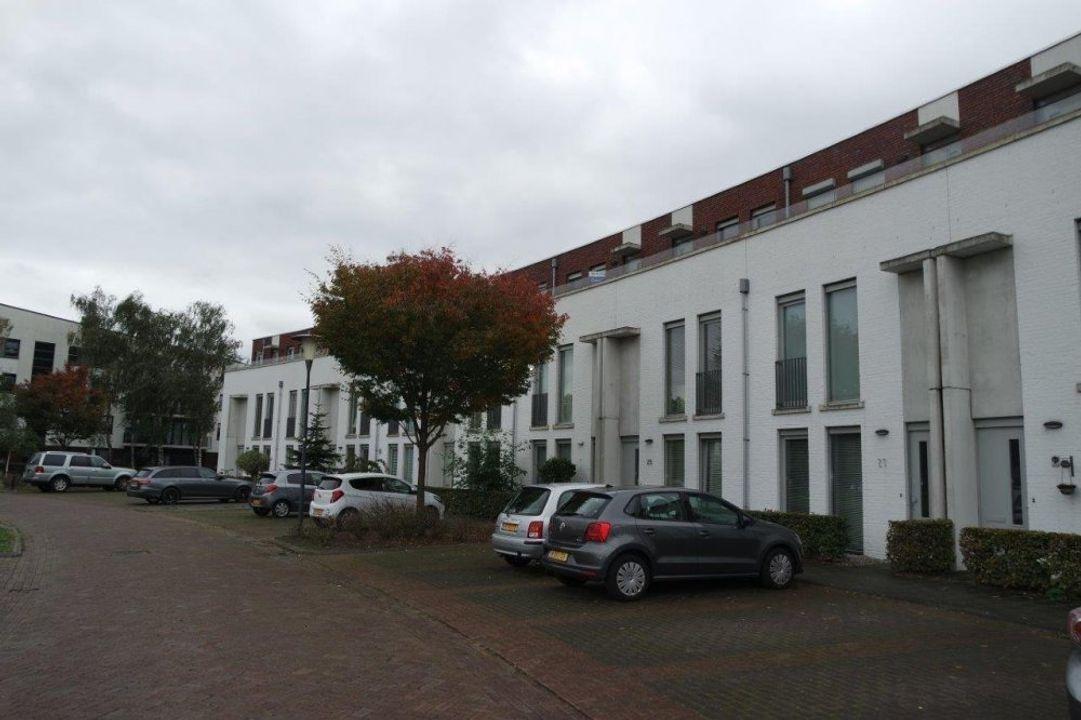 Eekhoorn, Veldhoven blur