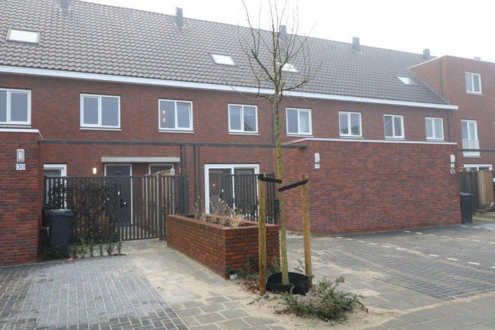 Houtblazersstraat, Eindhoven foto-1 blur