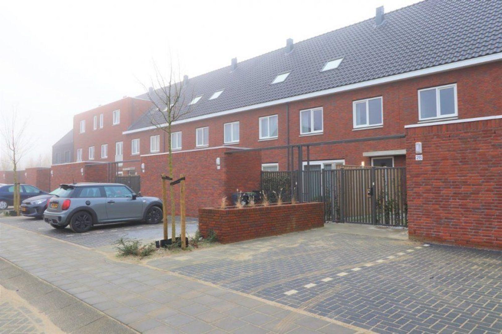 Houtblazersstraat, Eindhoven foto-2 blur