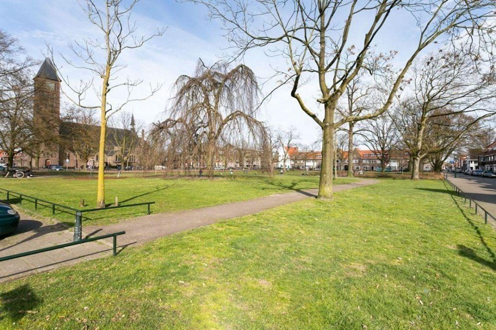 Ranonkelstraat, Eindhoven foto-13 blur