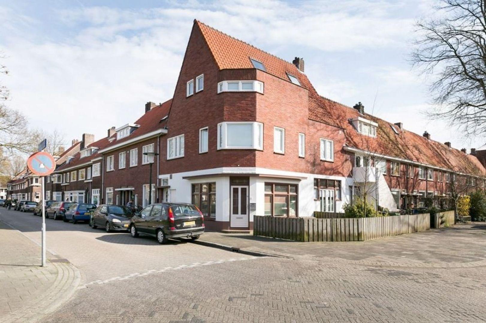 Ranonkelstraat, Eindhoven foto-0 blur