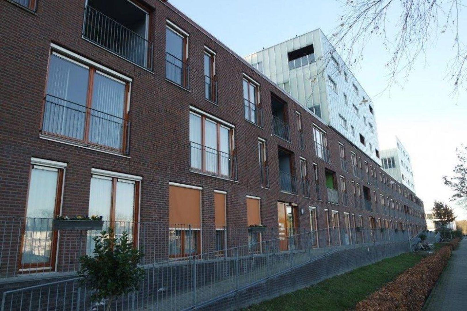 Zandkasteel, Eindhoven foto-0 blur