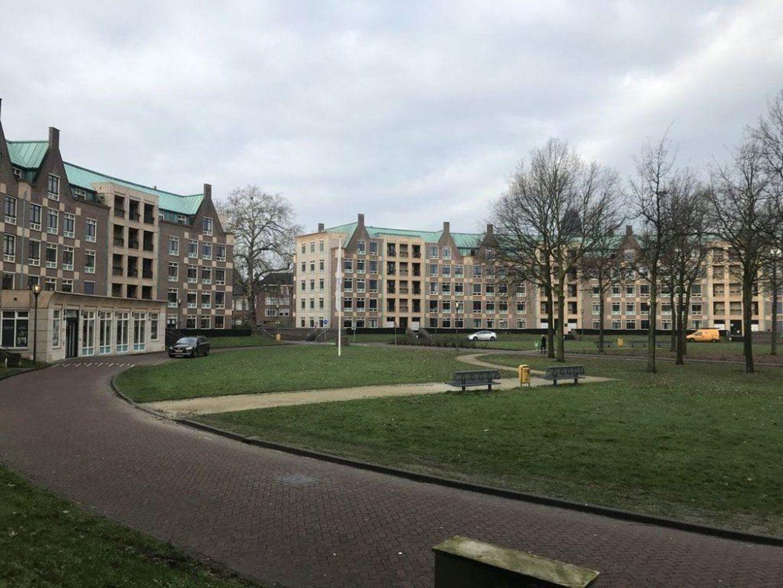 Frans Joseph van Thielpark, Helmond foto-1 blur