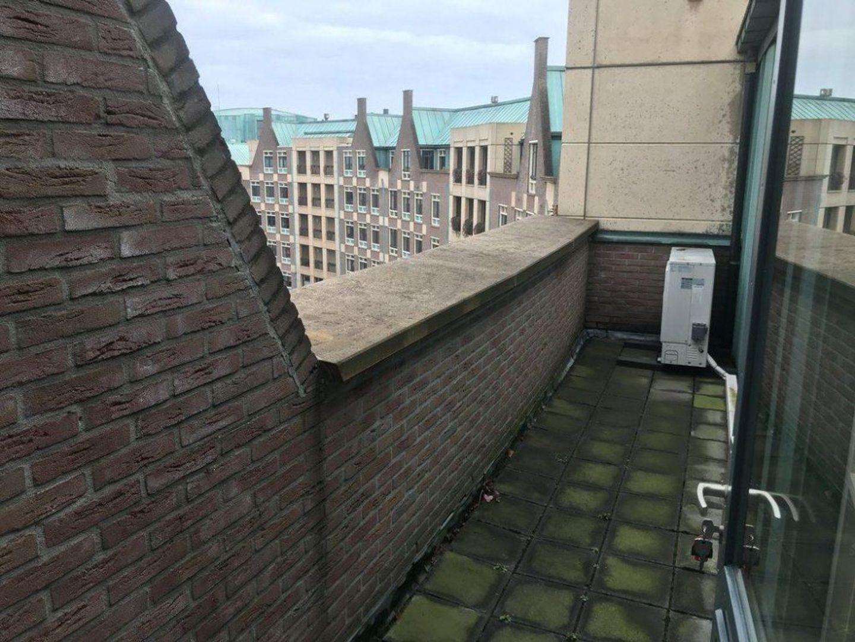 Frans Joseph van Thielpark, Helmond foto-7 blur