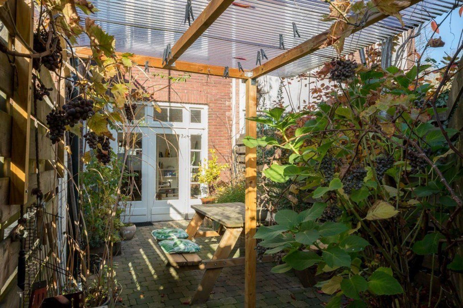 Willem de Zwijgerstraat, Eindhoven foto-6 blur