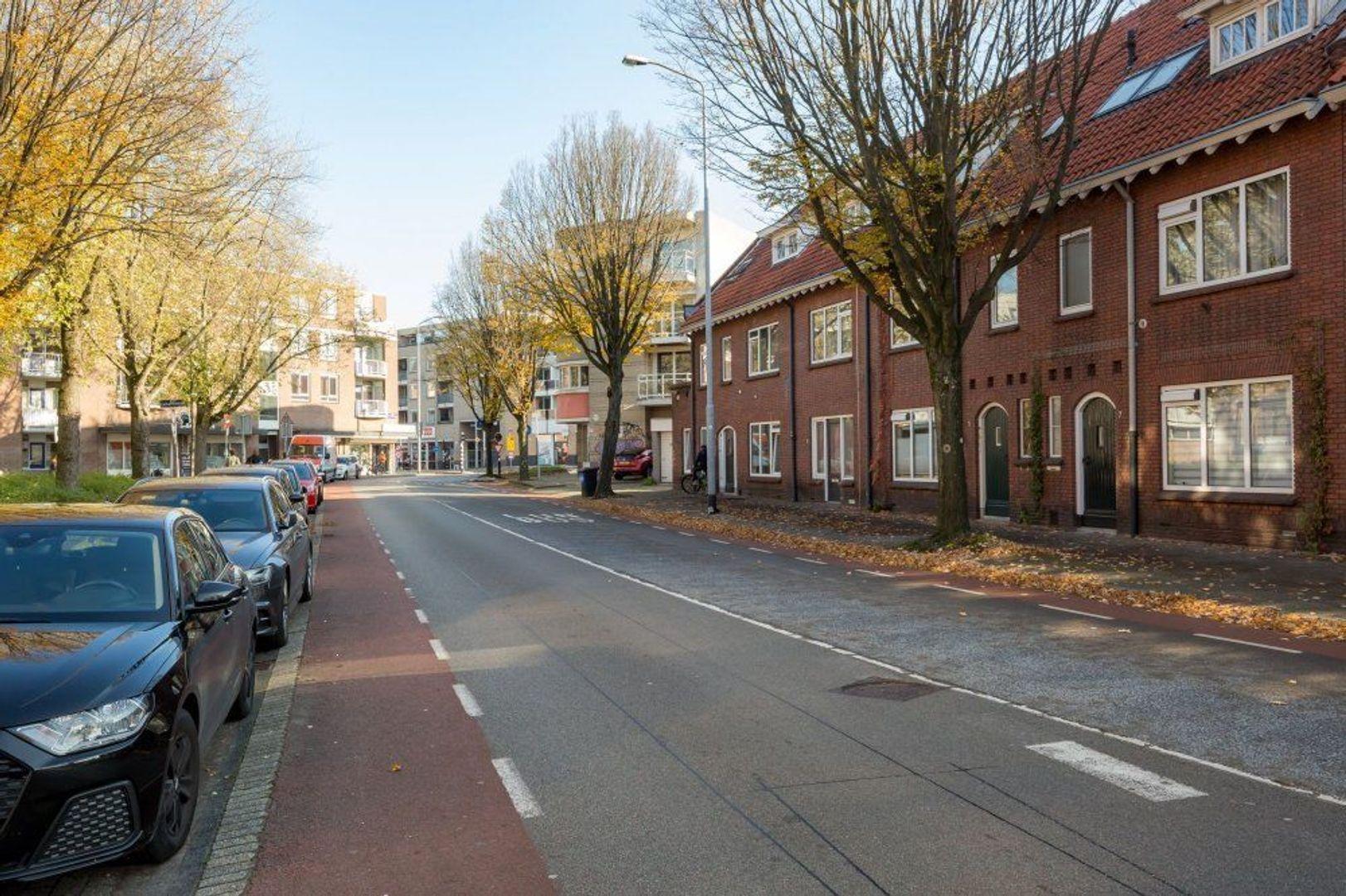Willem de Zwijgerstraat, Eindhoven foto-19 blur