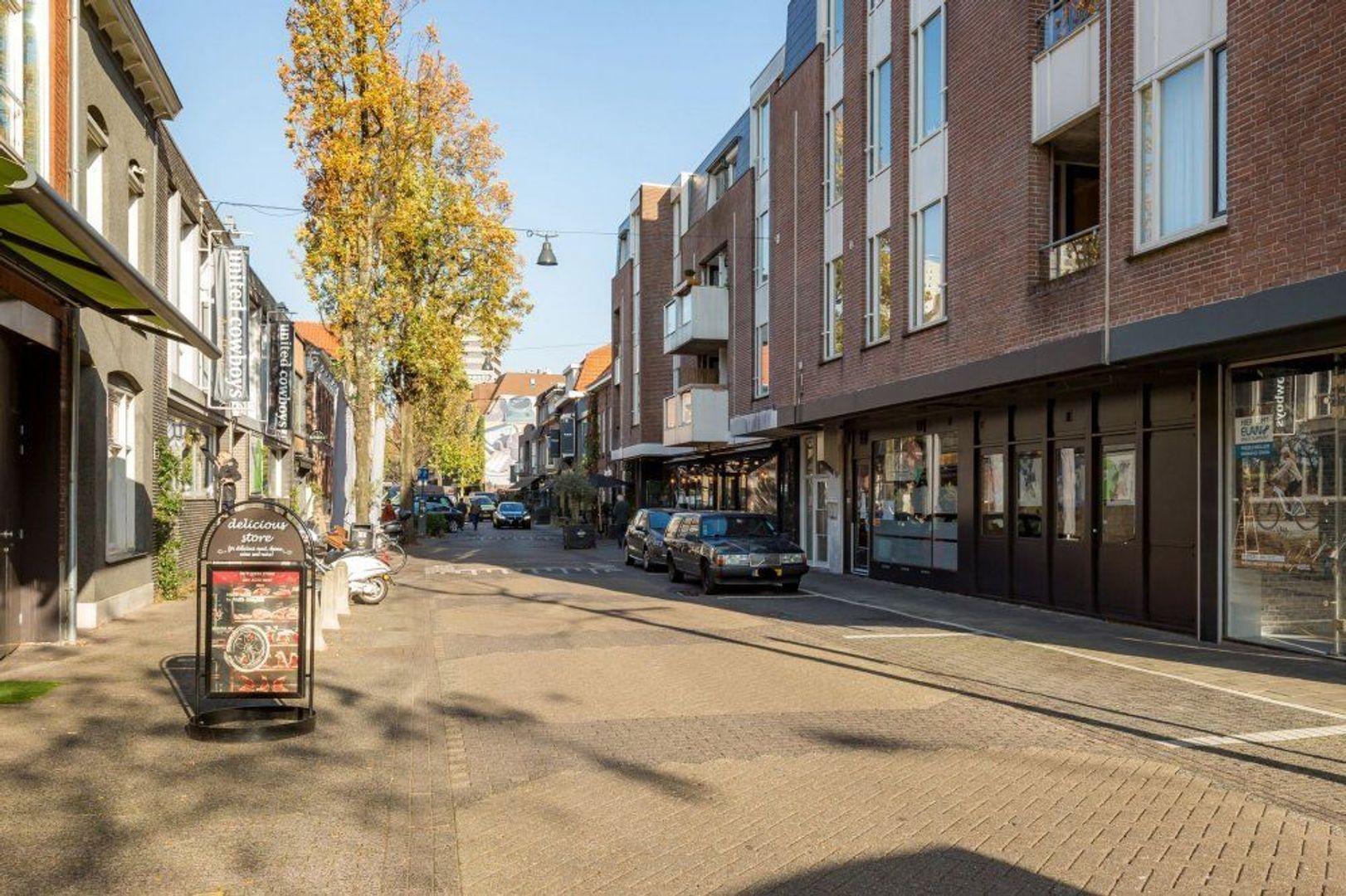 Willem de Zwijgerstraat, Eindhoven foto-20 blur