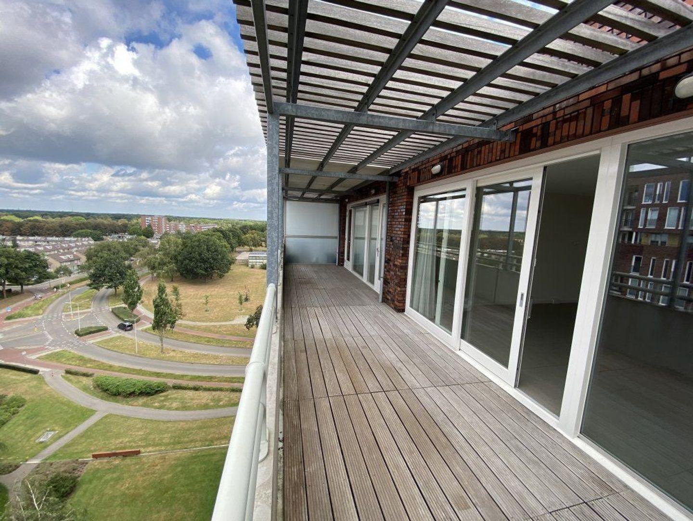 Abdijtuinen, Veldhoven foto-7 blur