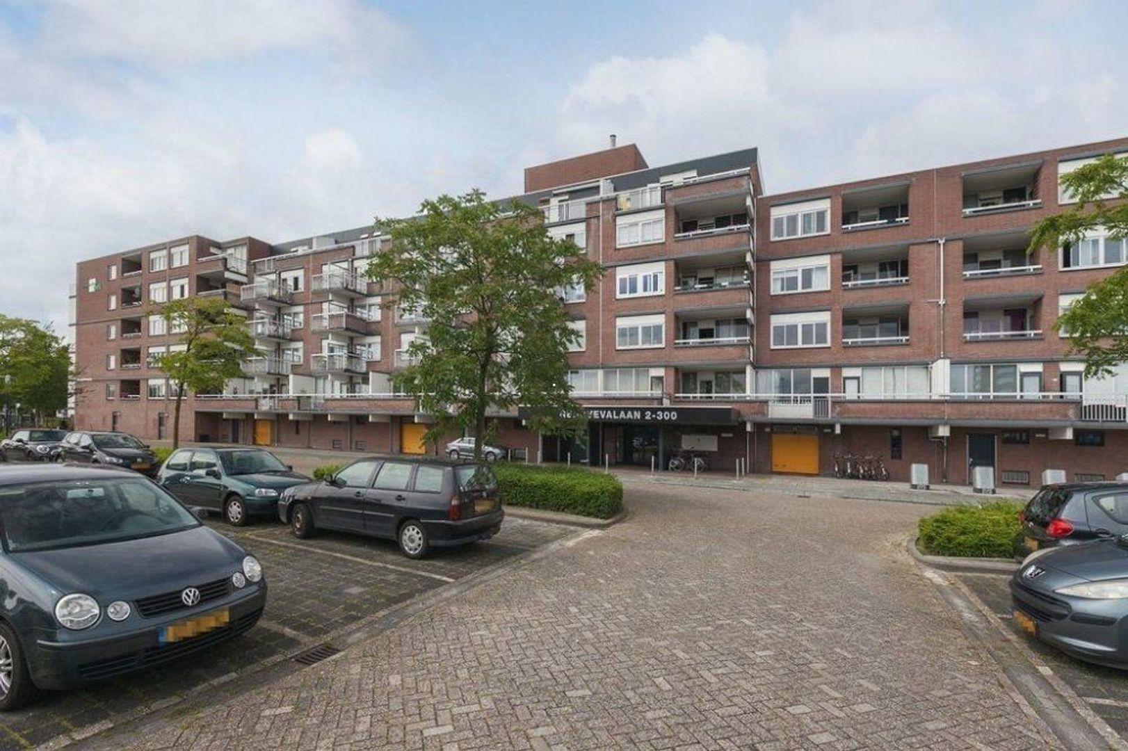 Genovevalaan, Eindhoven foto-0 blur