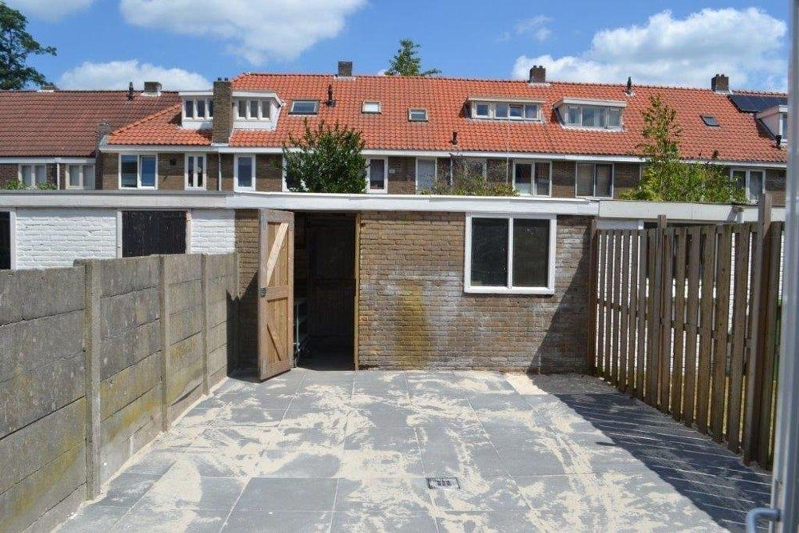 Korenbloemstraat, Eindhoven foto-12 blur