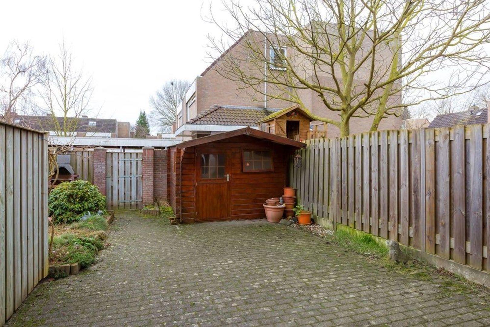 Peppelbeek, Veldhoven foto-10 blur