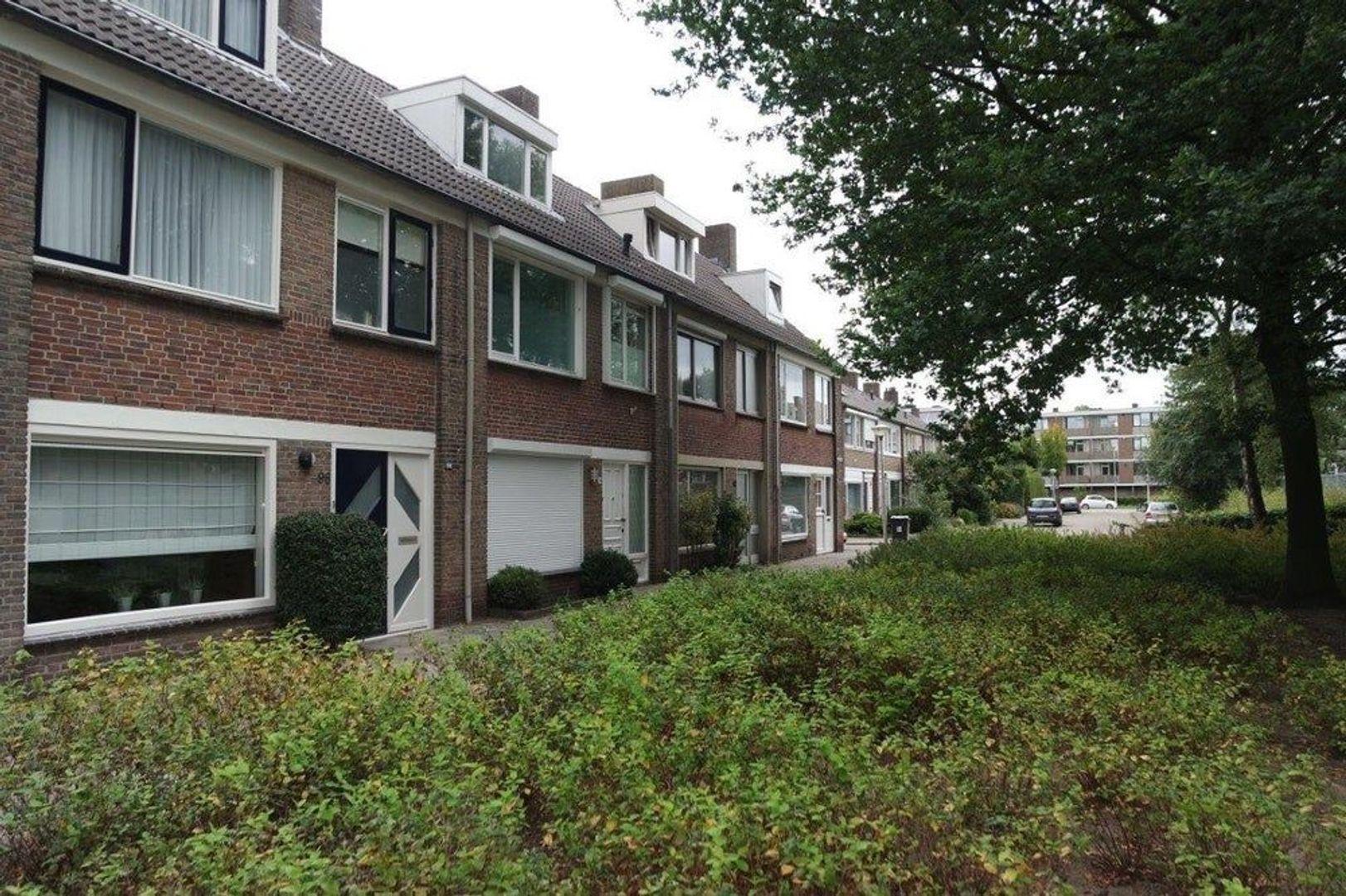 Chopinlaan, Eindhoven foto-15 blur