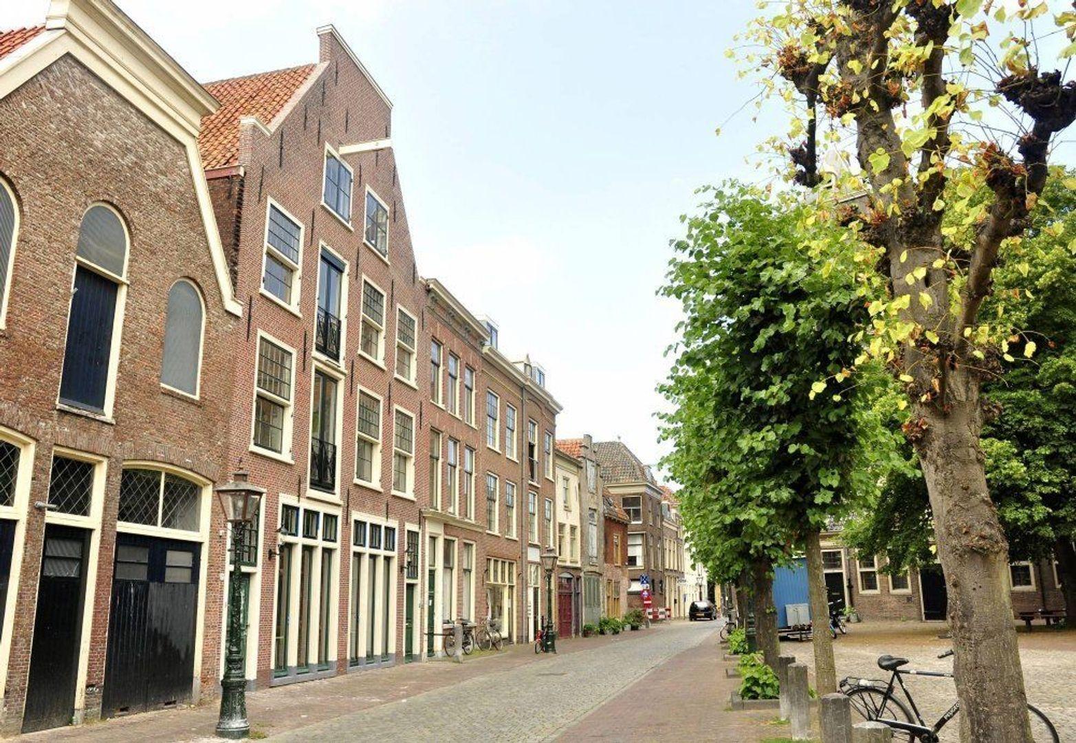 Nieuwstraat, Leiden foto-0