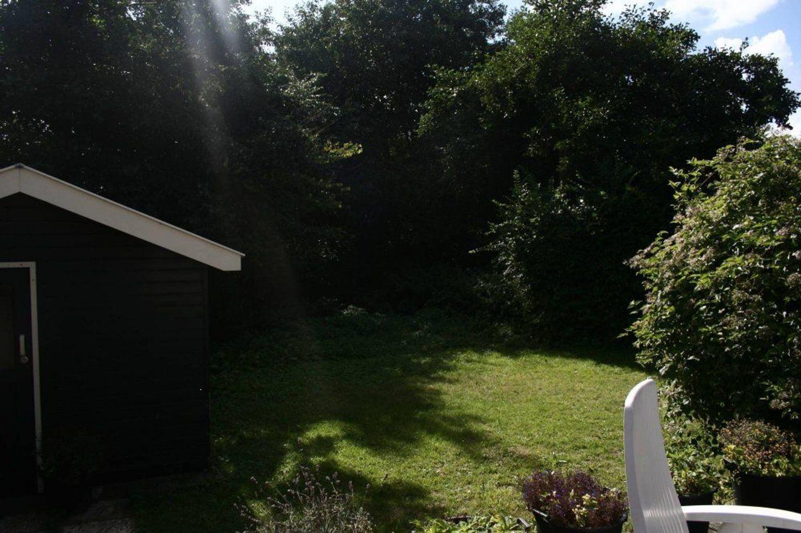 Plein Soleil, Noordwijk foto-15