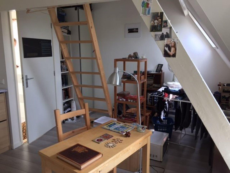 Lage Rijndijk, Leiden foto-2