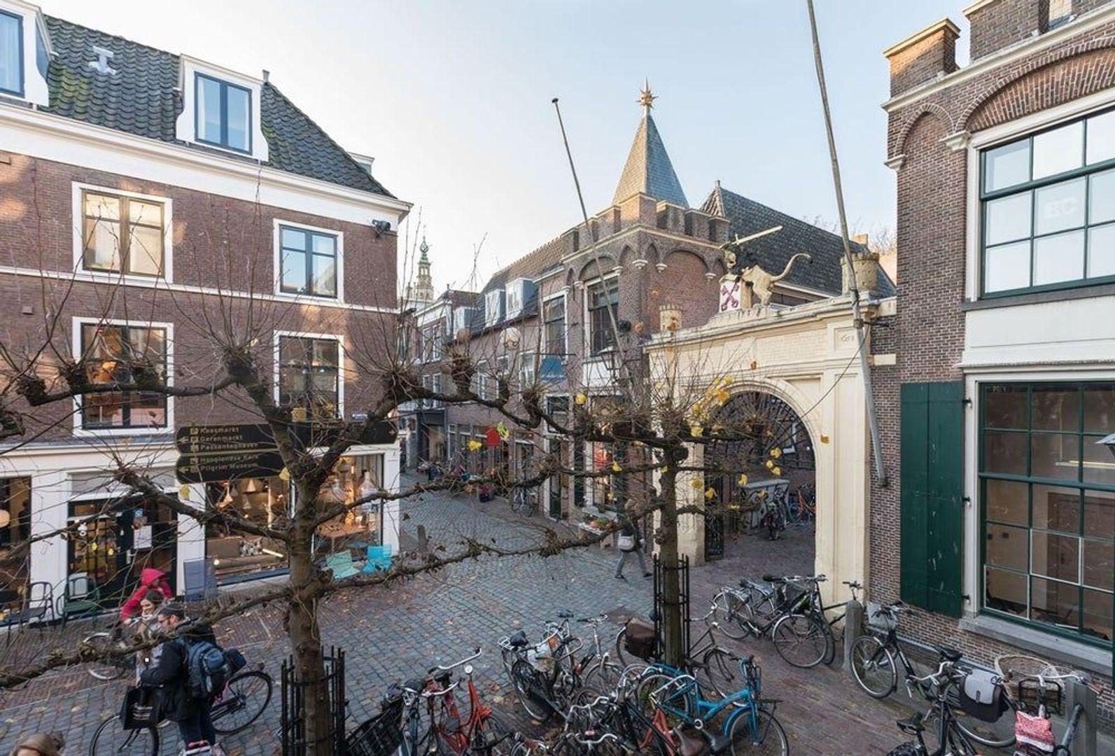 Burgsteeg, Leiden foto-16