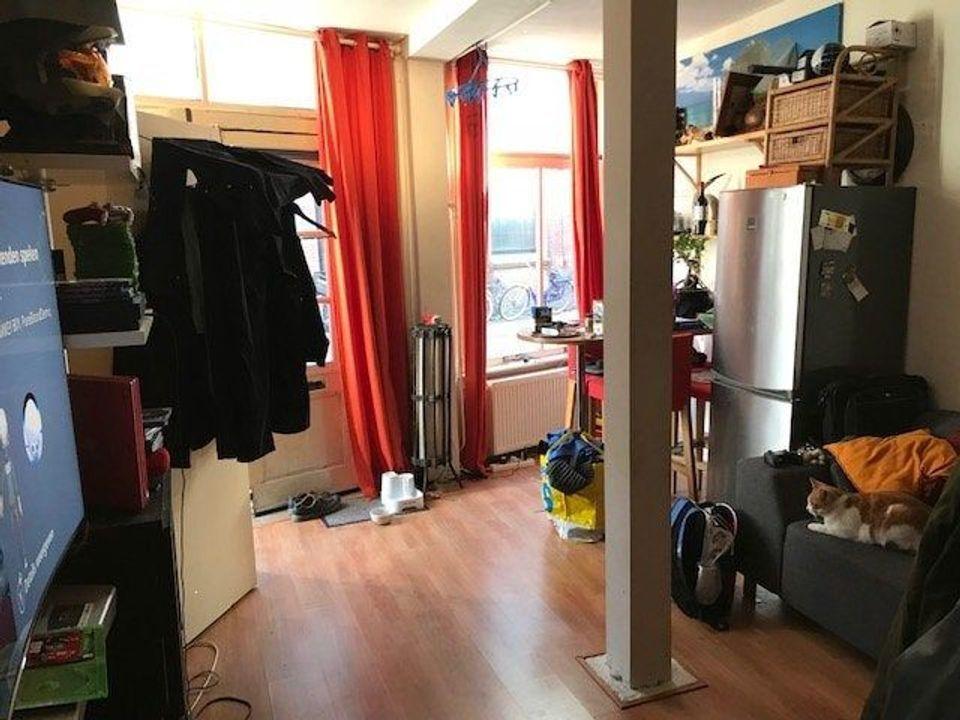 Koestraat, Leiden