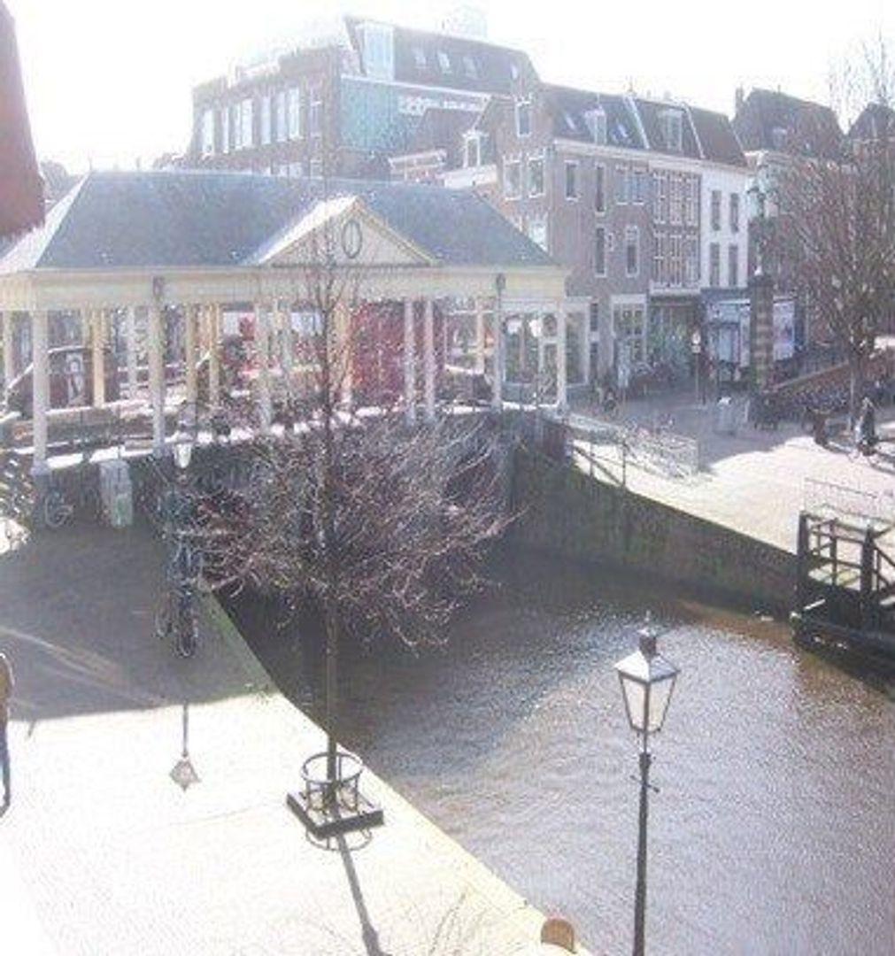 Nieuwe Rijn, Leiden foto-6