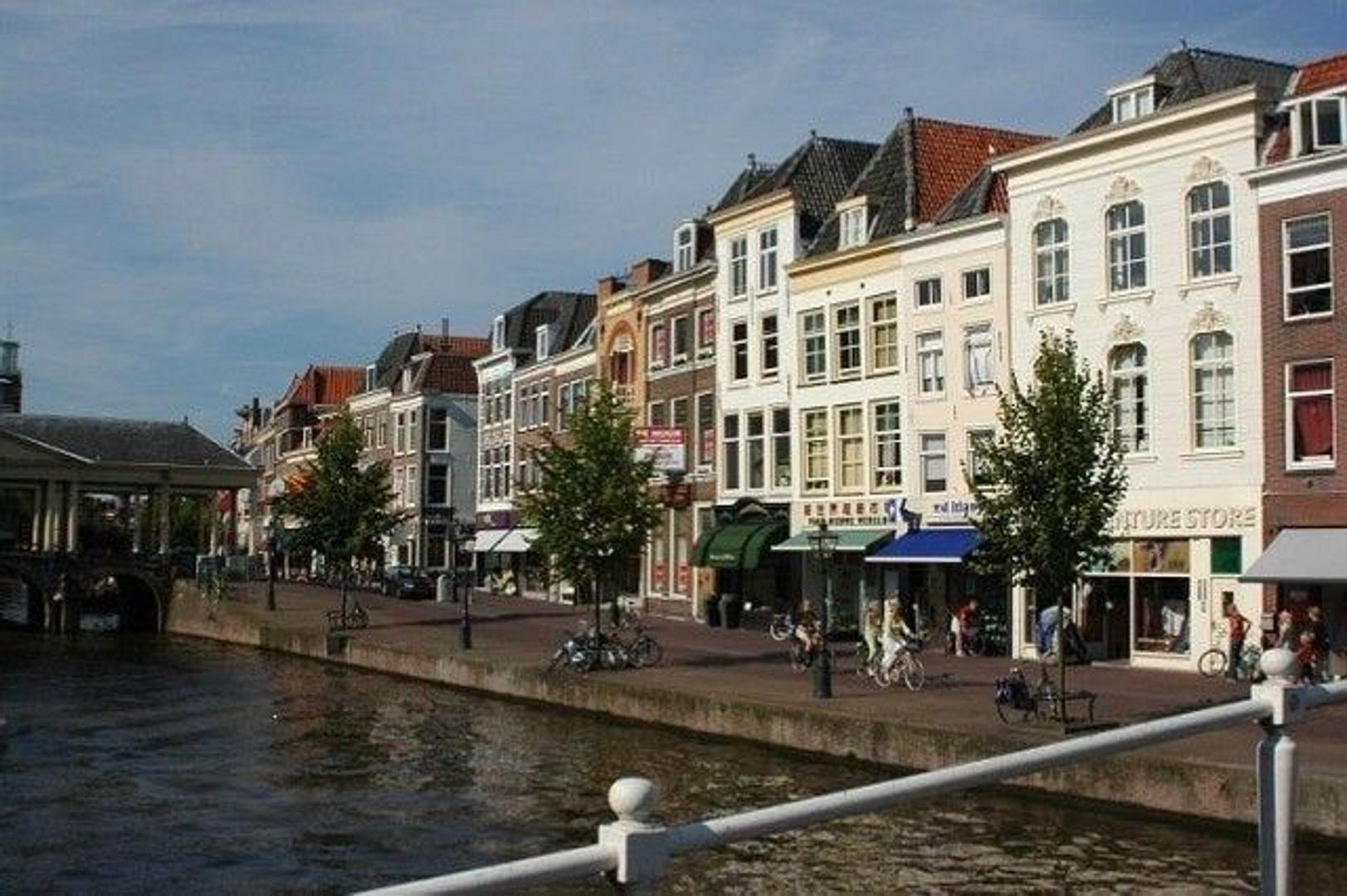 Nieuwe Rijn, Leiden foto-0