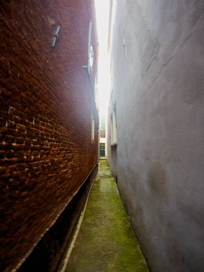 Oude Rijn, Leiden foto-17