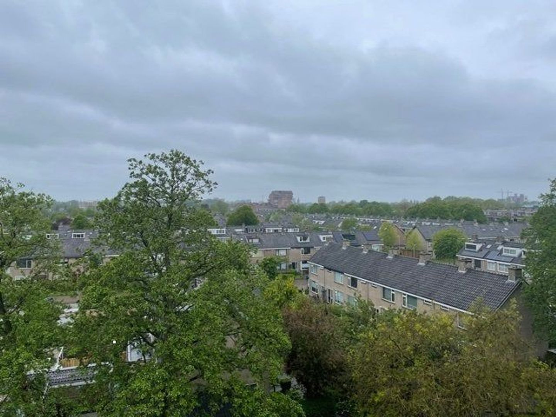 Lokhorst, Leiderdorp foto-24
