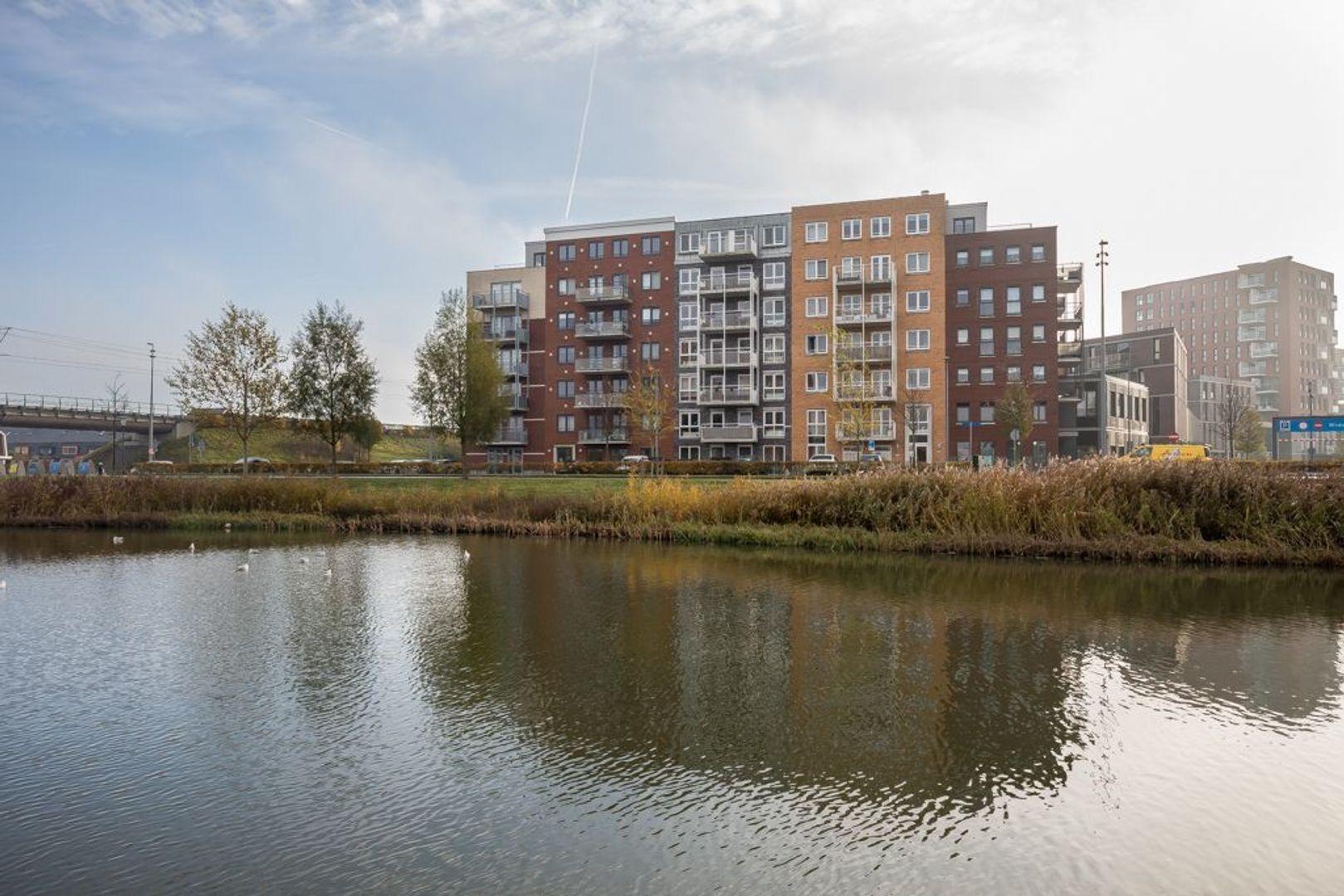 Westerschelde 10, Zoetermeer foto-0