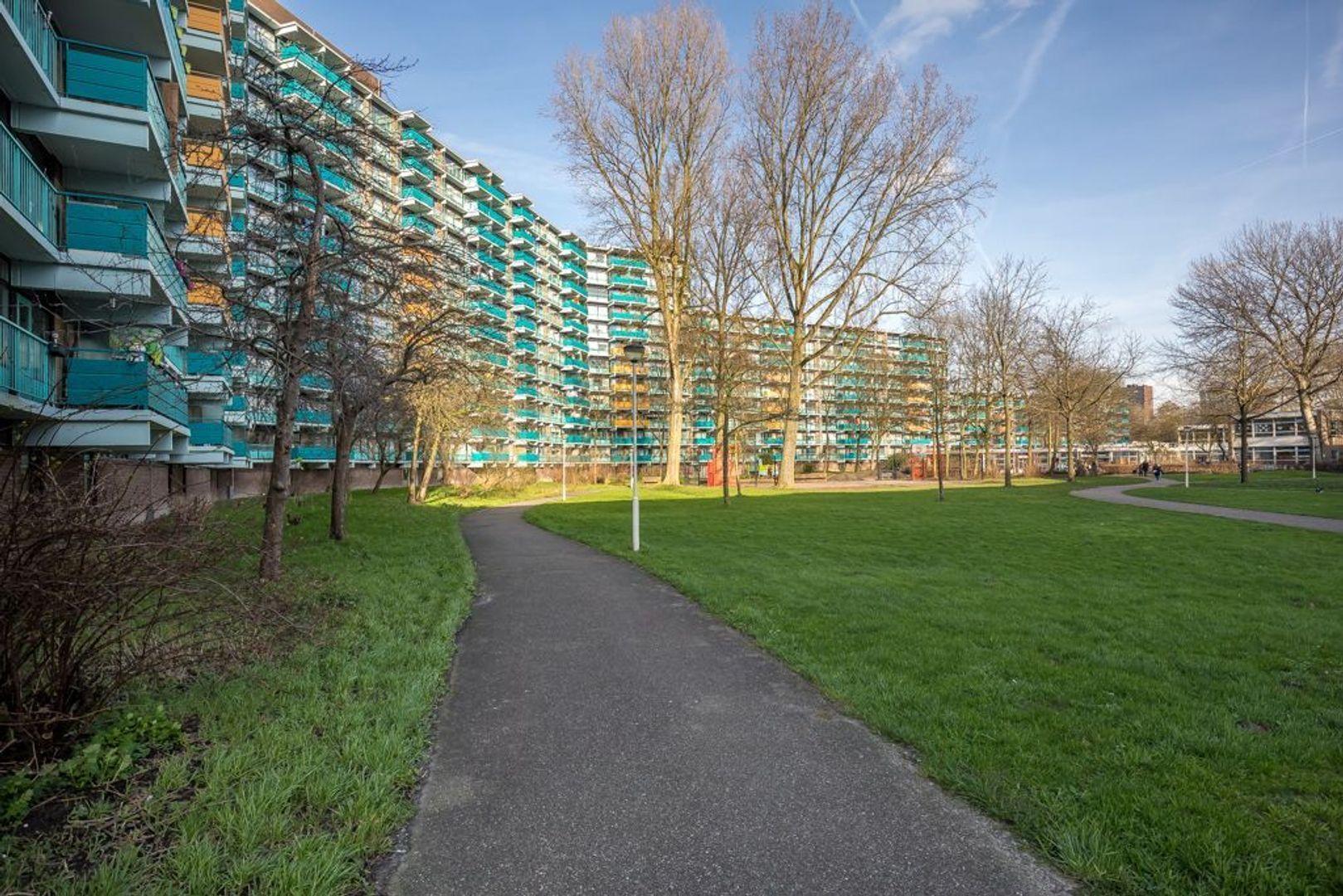 Hoevenbos 94, Zoetermeer foto-50