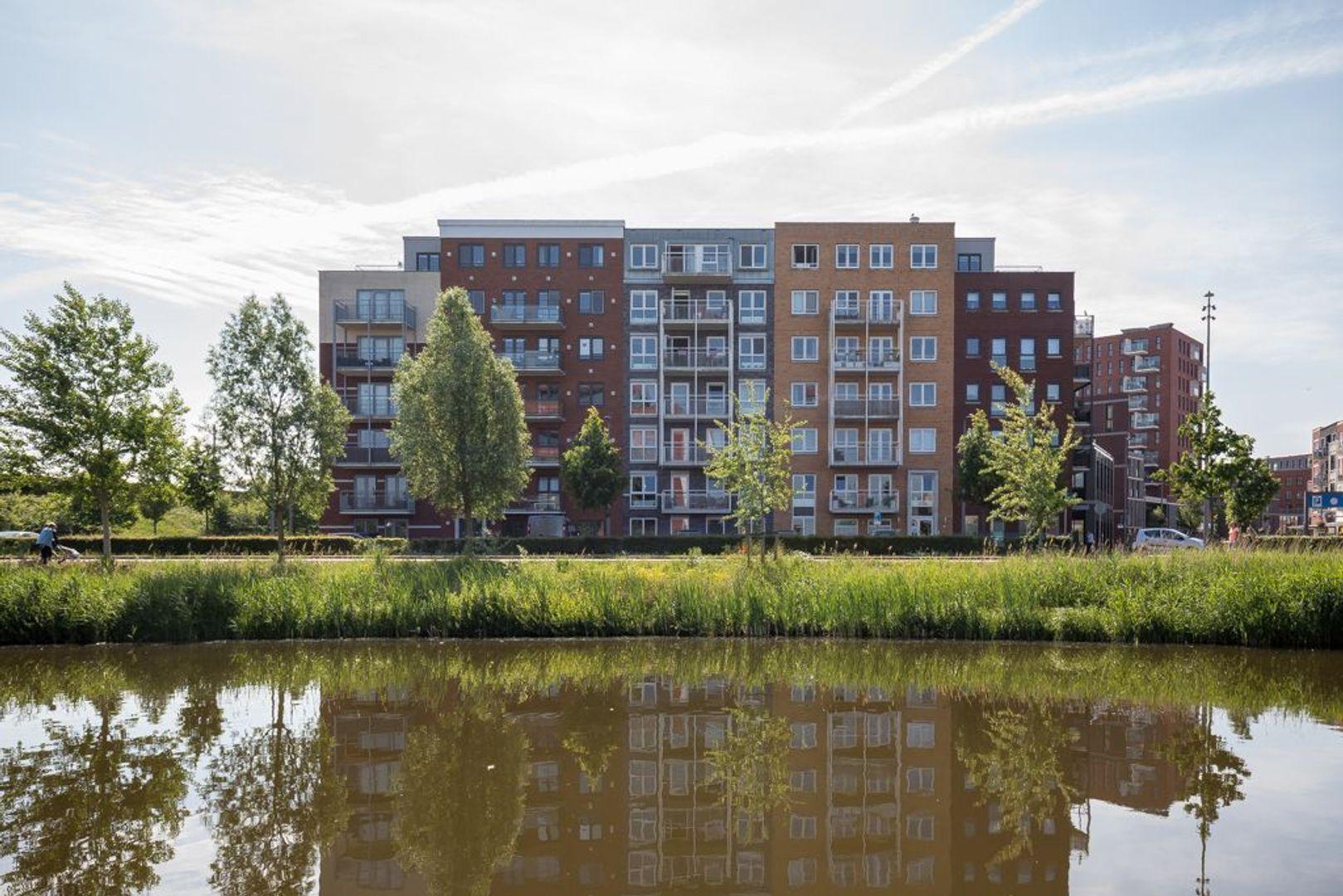 Westerschelde 37, Zoetermeer foto-0