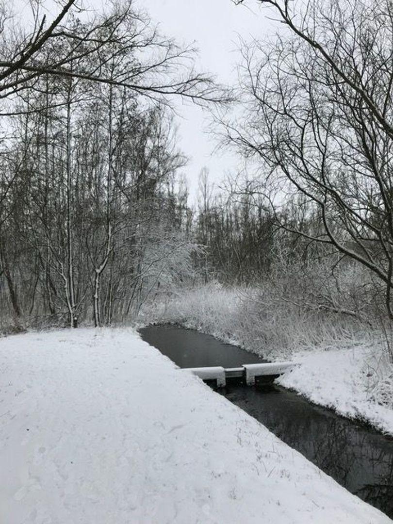Loggerkade 41, Zoetermeer foto-75