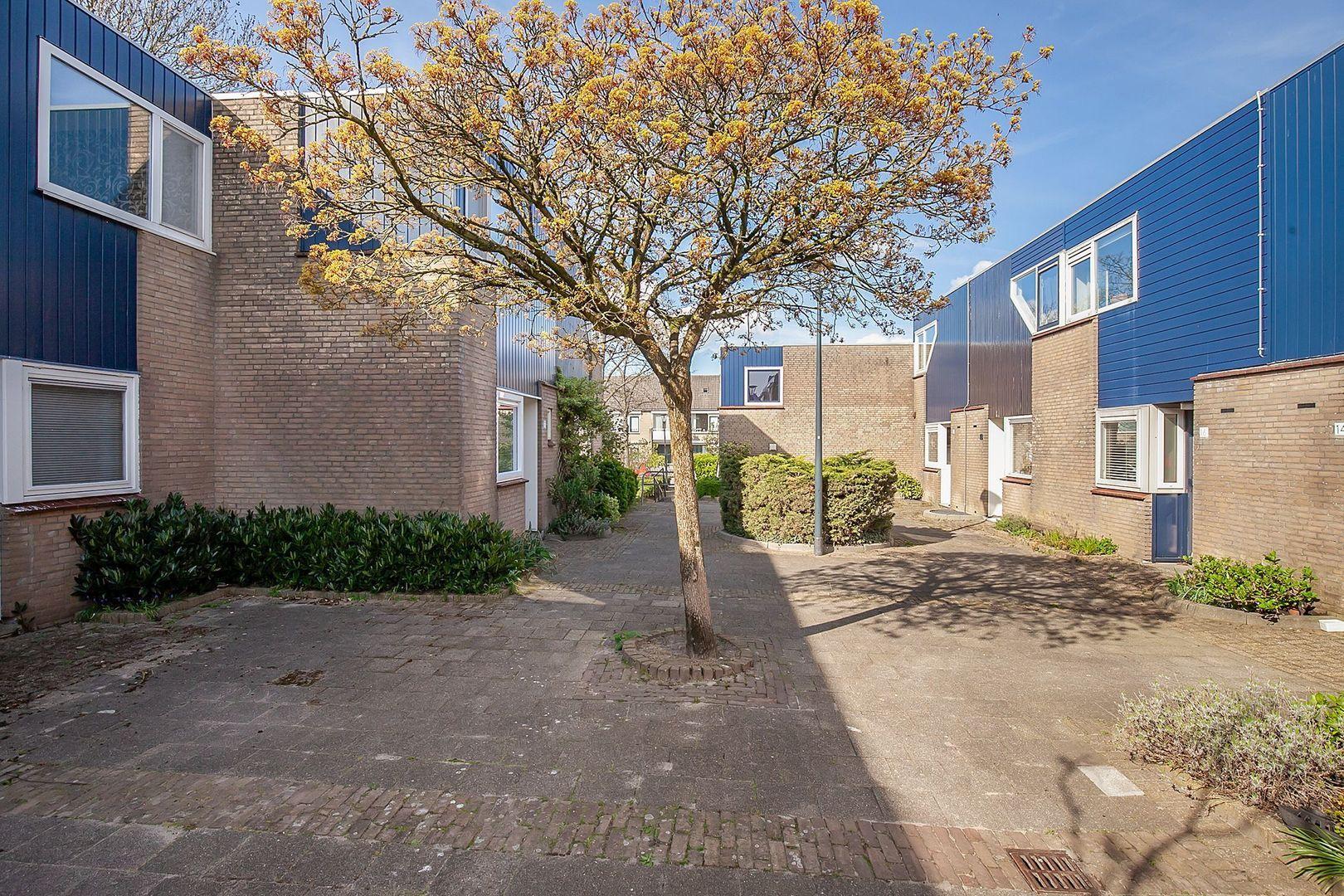 Meestoof 17, Oud-Beijerland foto-22 blur