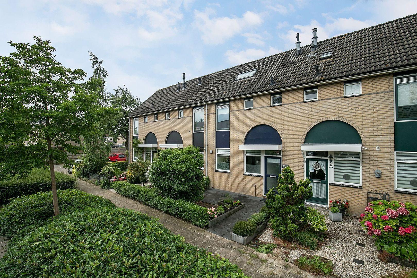 Roerdompweg 45, Oud-Beijerland foto-0 blur