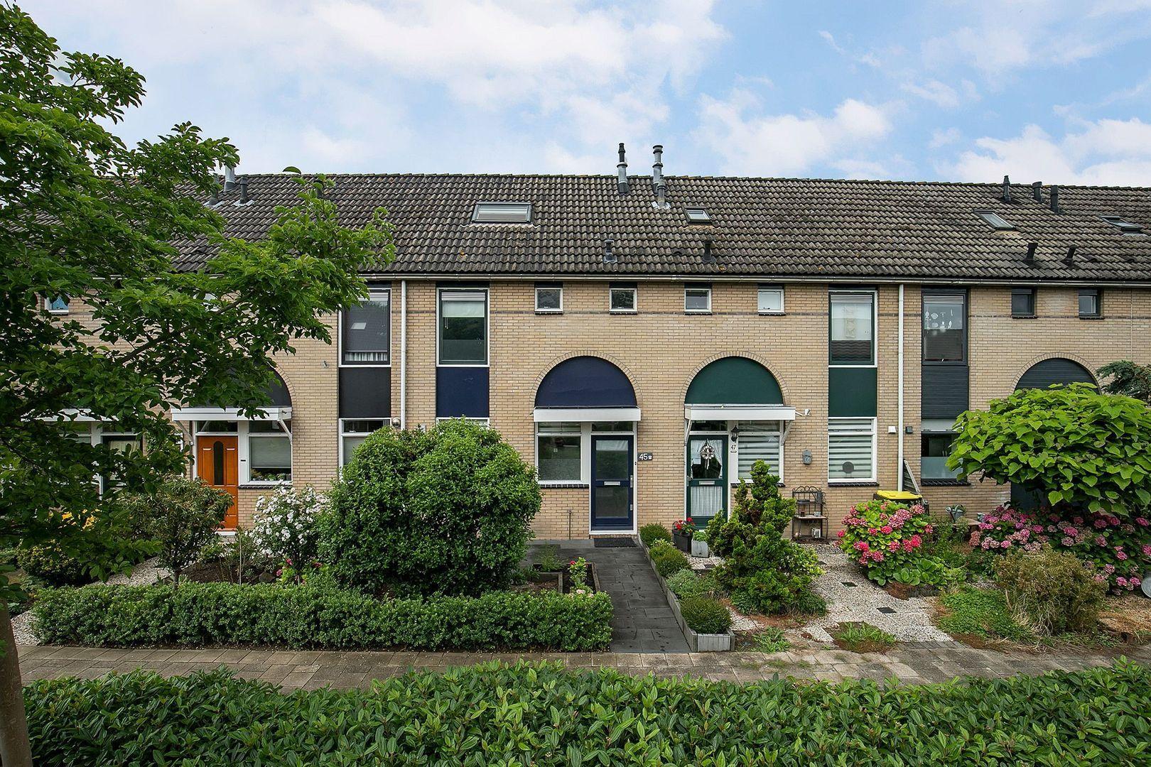 Roerdompweg 45, Oud-Beijerland foto-30 blur
