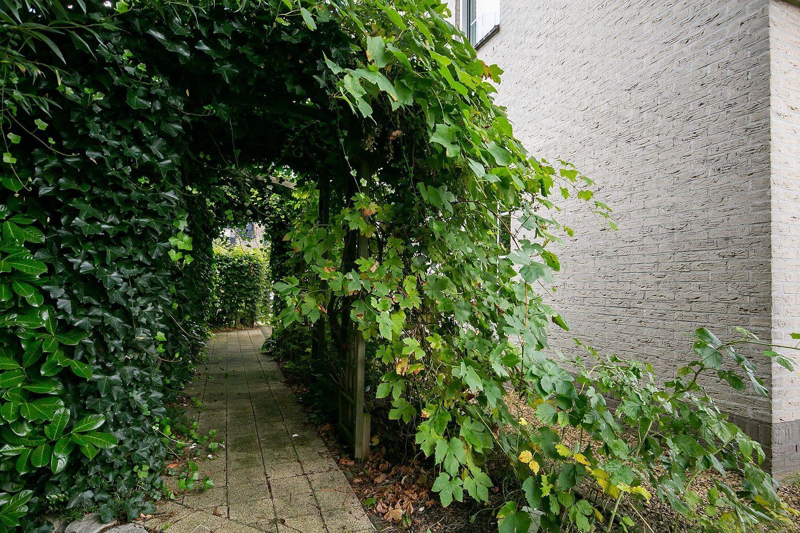 Vroedschapstraat 5, Nieuw-Beijerland foto-59 blur