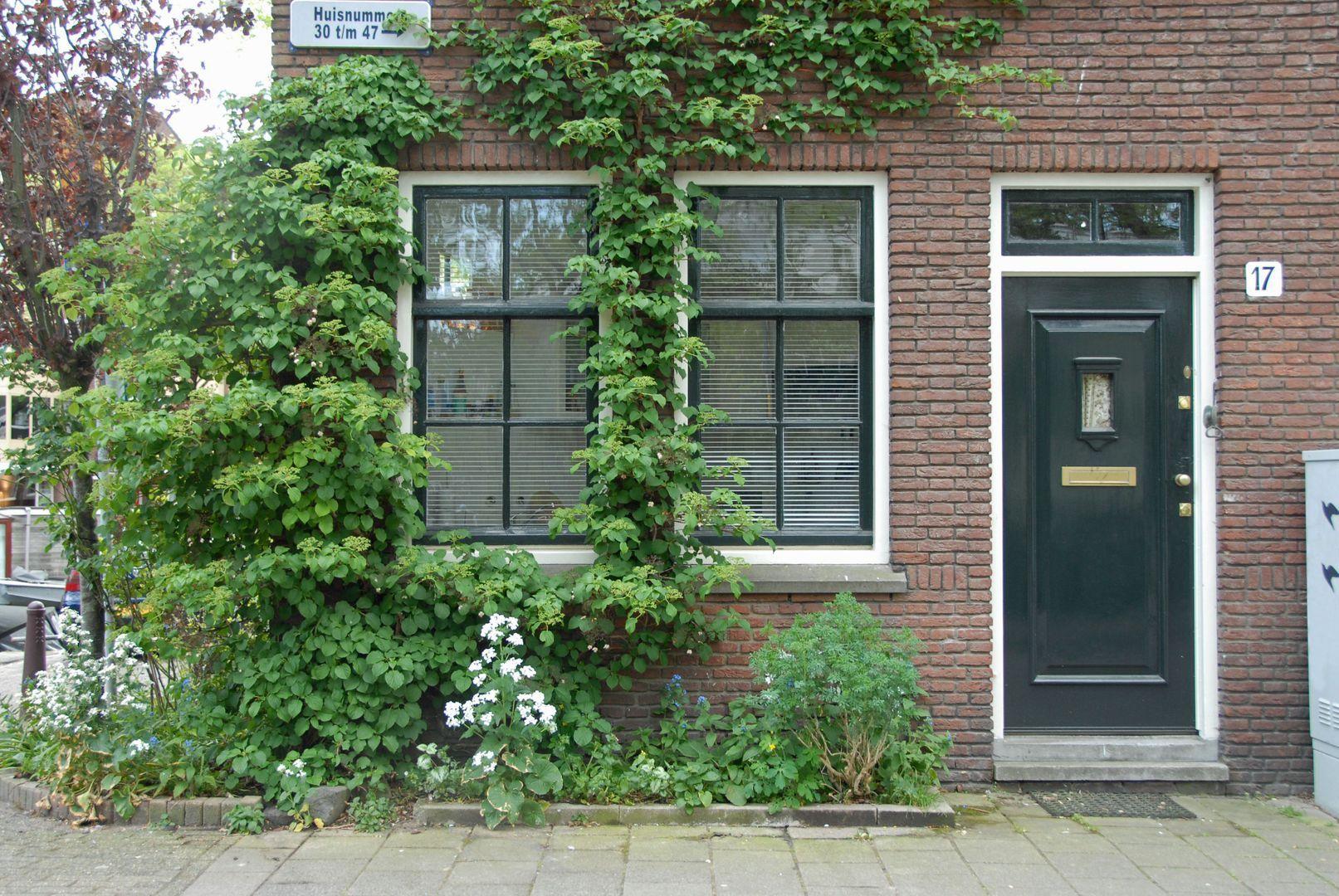 Hortusplantsoen 17, Amsterdam foto-0