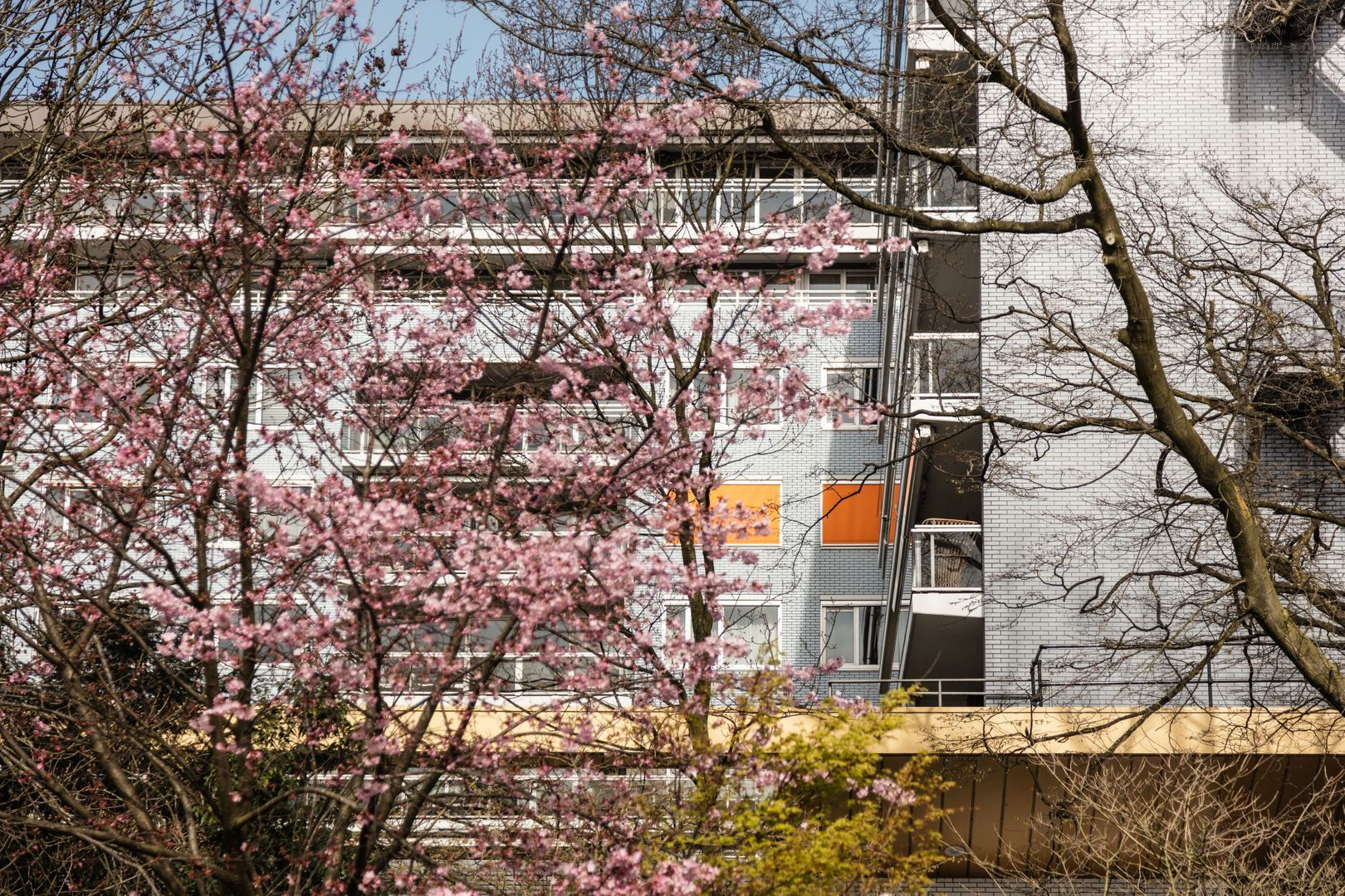 Stadhouderskade 17 C, Amsterdam foto-23