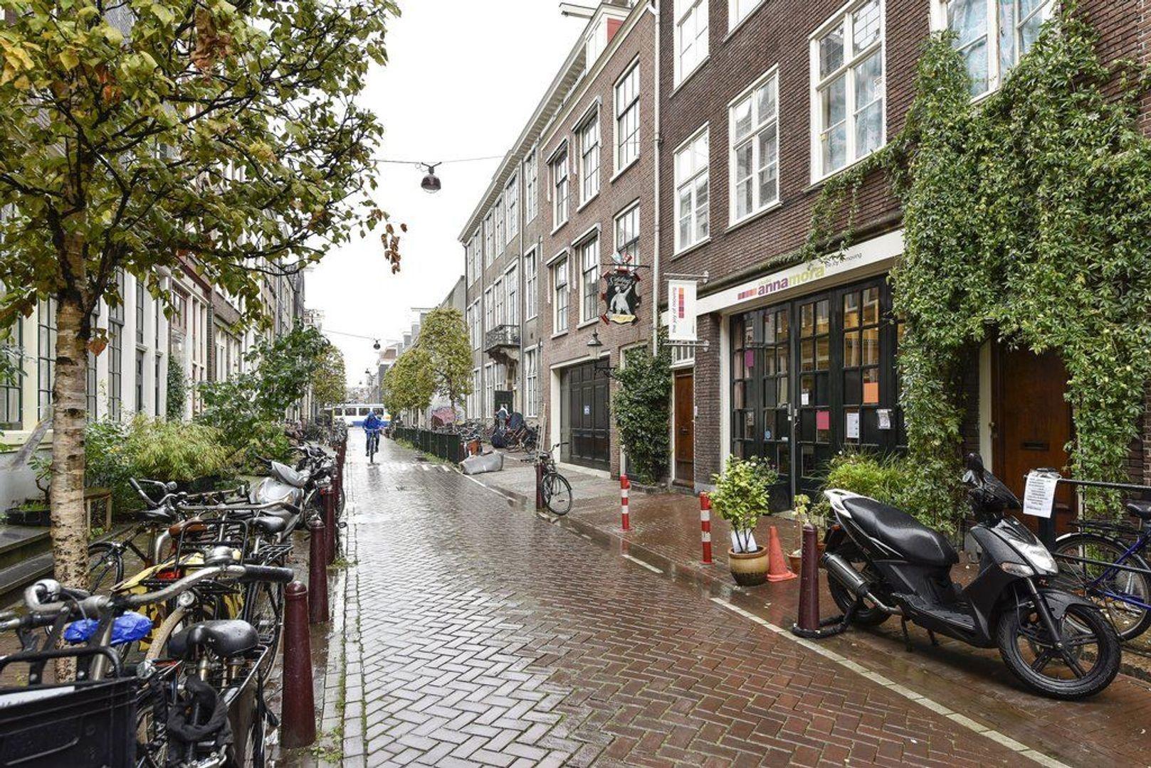 Nieuwe Looiersstraat 21 4, Amsterdam foto-15