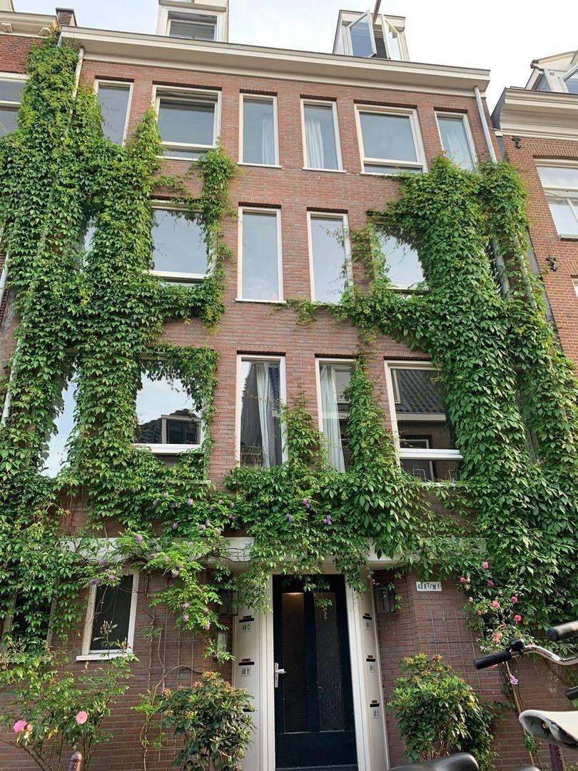 Eerste Weteringdwarsstraat 48 D, Amsterdam foto-18