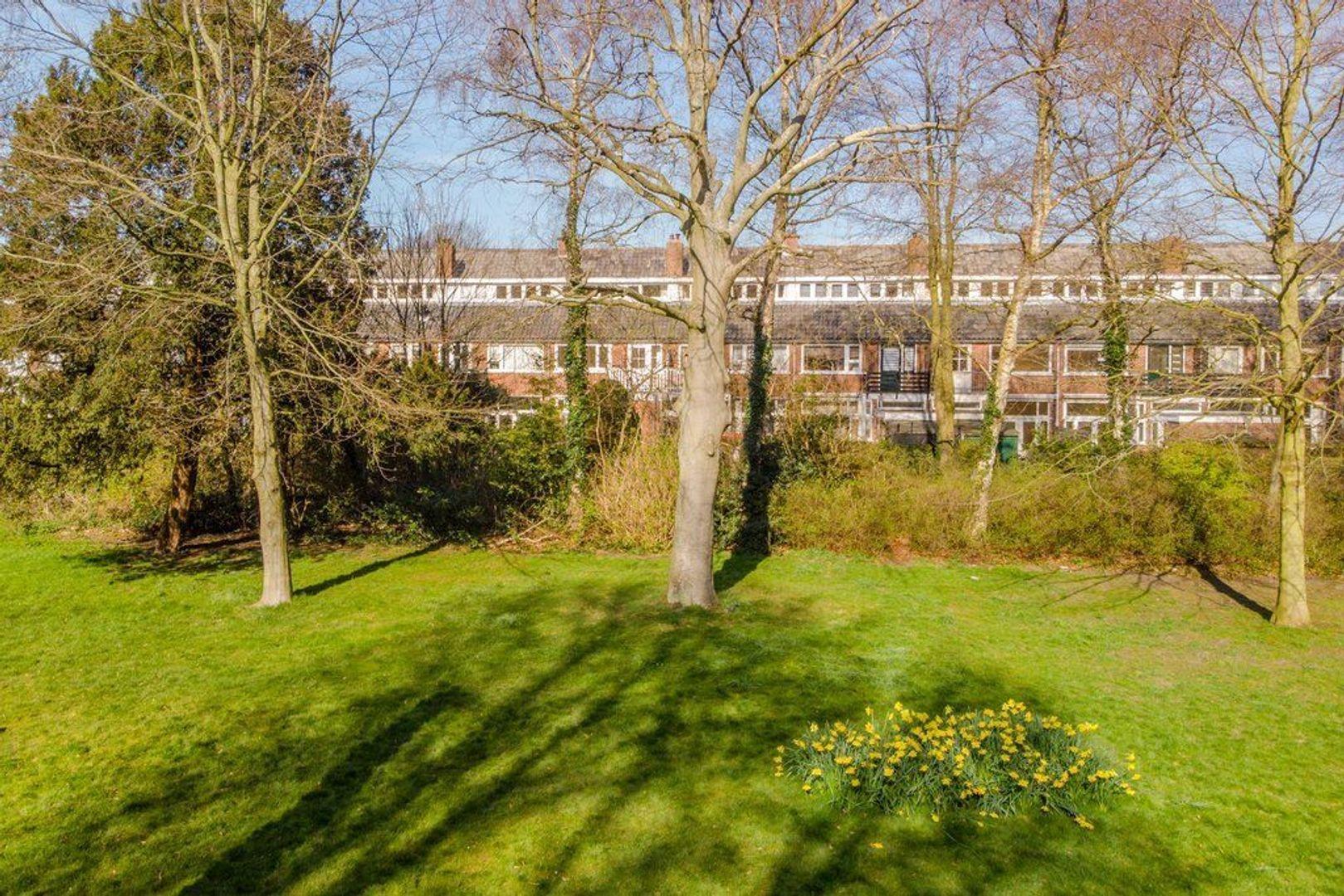 Van Zuylen van Nijeveltstraat 275, Wassenaar foto-41 blur