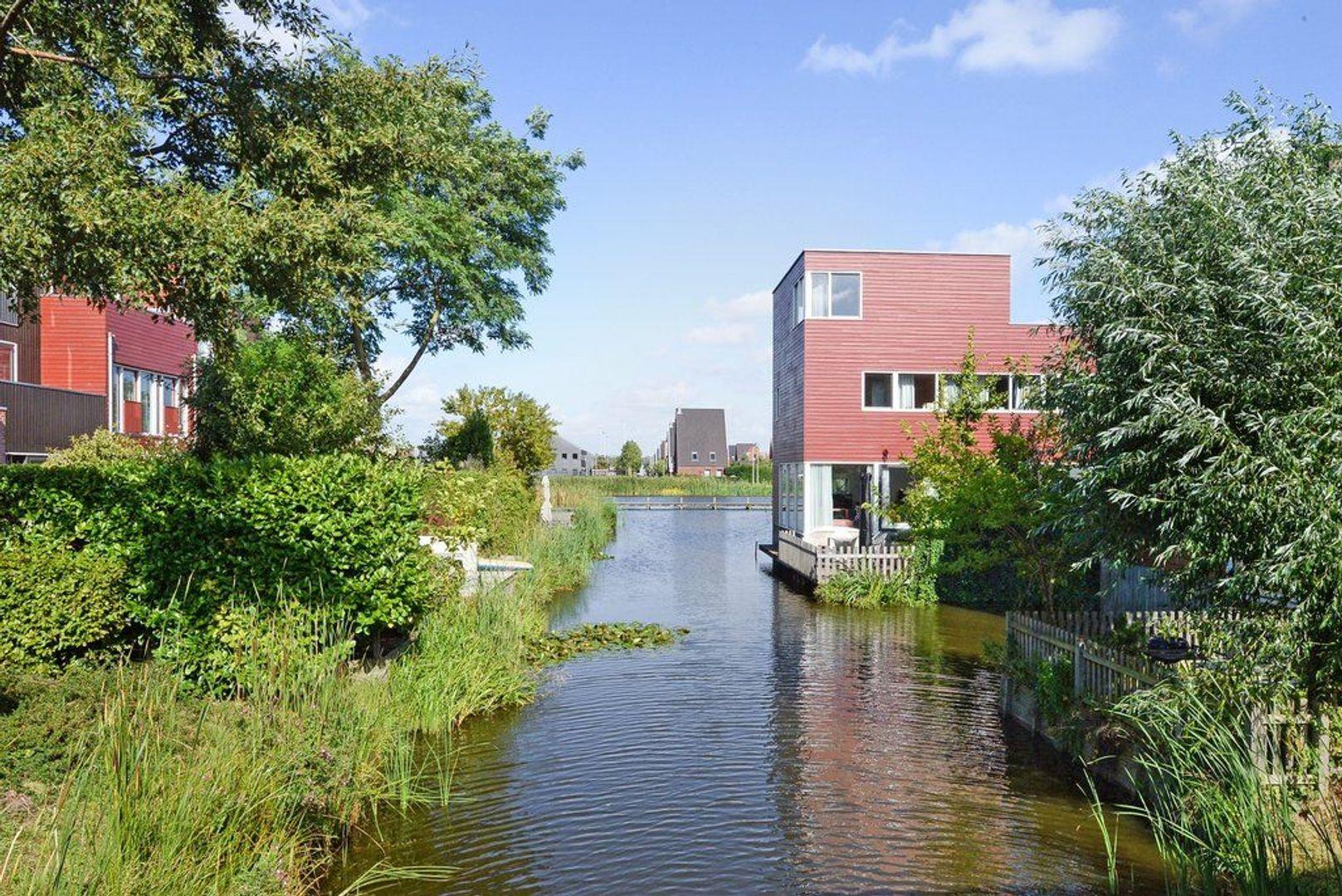 Zomereik 52, Den Haag foto-43 blur