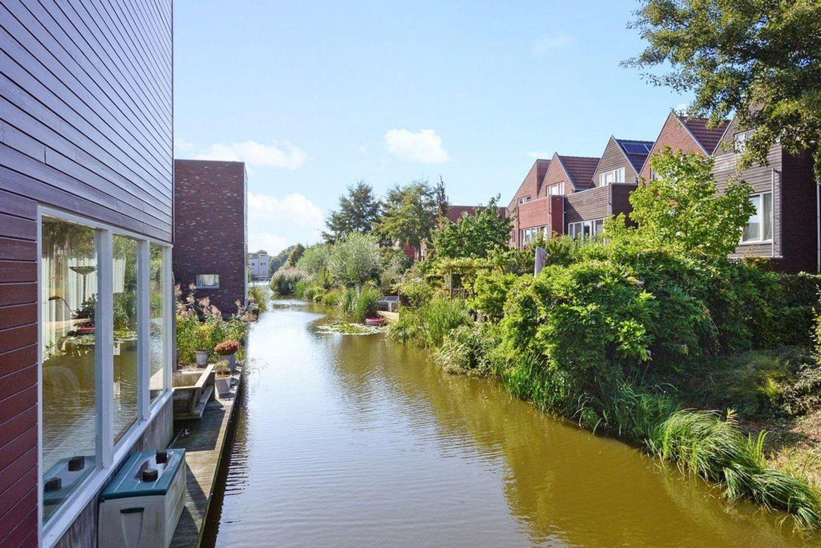 Zomereik 52, Den Haag foto-44 blur