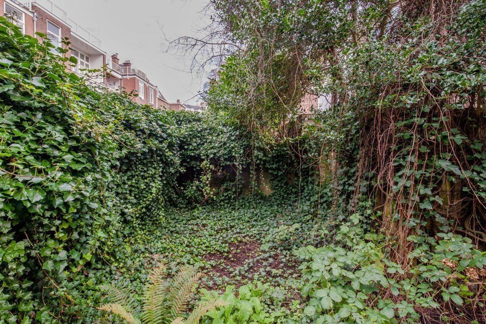 Waldeck Pyrmontkade 917, Den Haag foto-34 blur