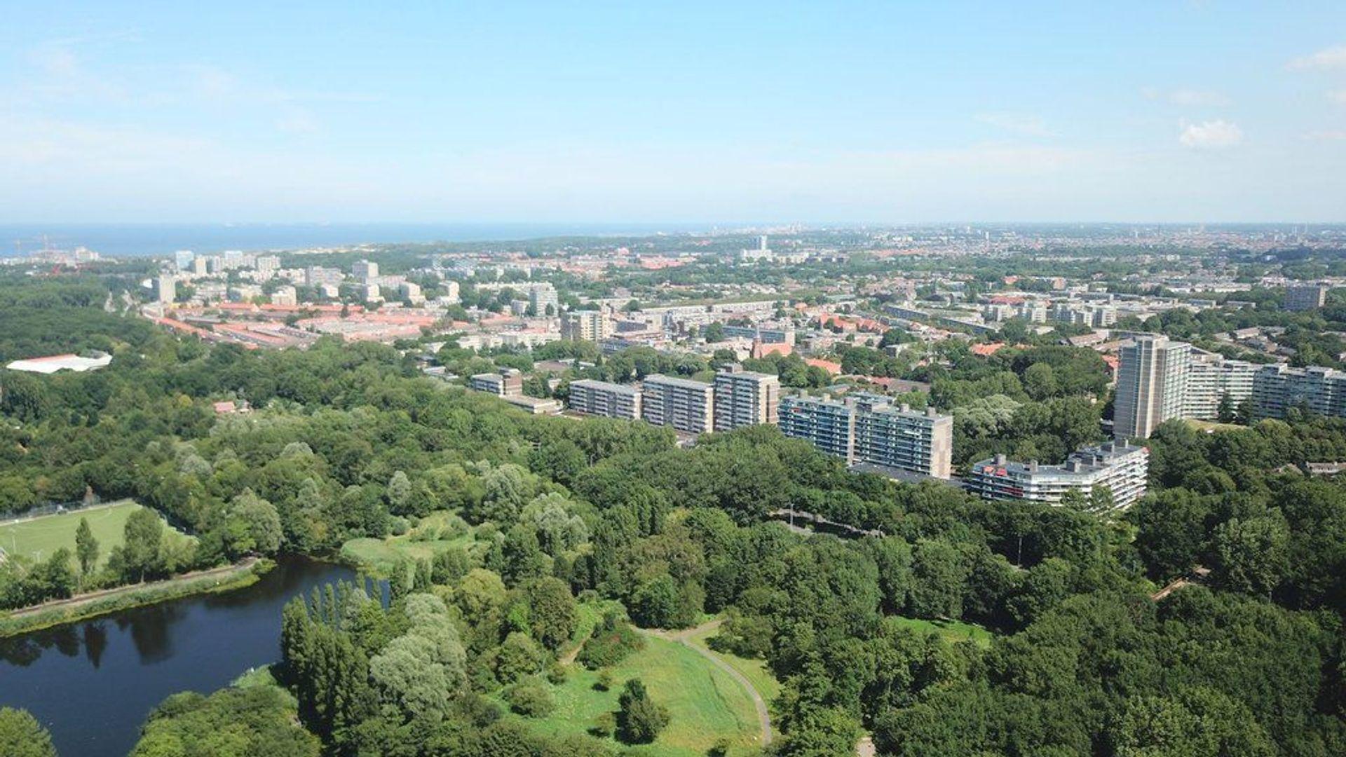 Hertog Albrechtlaan 19, Den Haag foto-29 blur