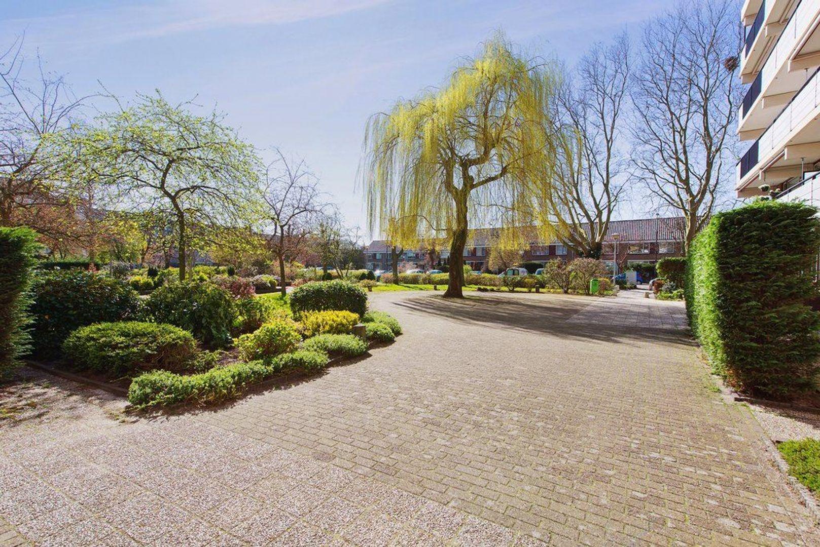 Hammarskjoldlaan 293, Rijswijk foto-23 blur