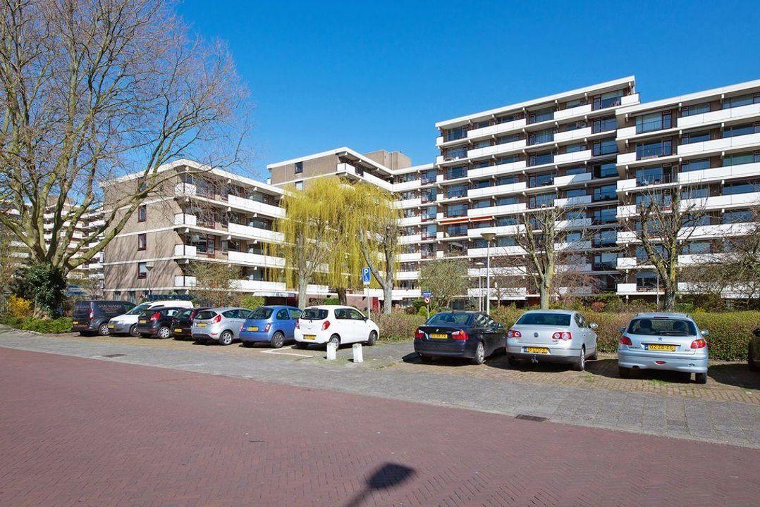 Hammarskjoldlaan 293, Rijswijk