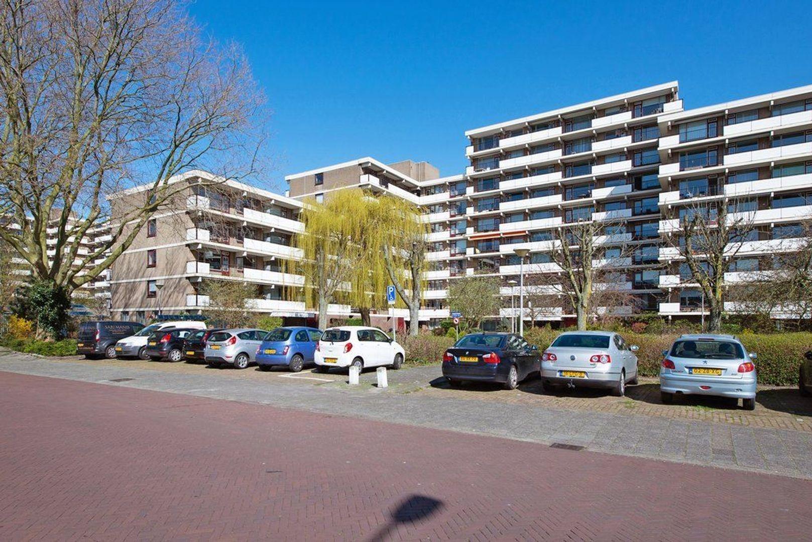 Hammarskjoldlaan 293, Rijswijk foto-0 blur